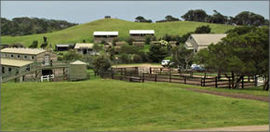 Ace Hi Riding Ranch - Foster Accommodation