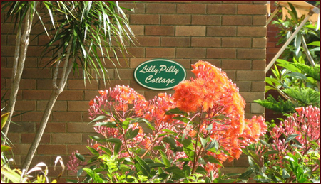 Lillypilly - Foster Accommodation