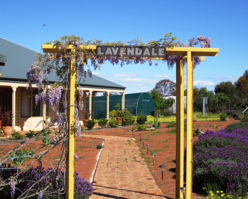 Lavendale Farmstay and Cottages - Foster Accommodation