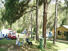 Glasshouse Mountains Holiday Village - Foster Accommodation