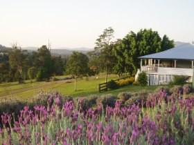 Blue Ridge Lavender Farm And Retreat - Foster Accommodation