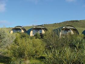 Saunders Gorge Sanctuary - Nature Lodges - Foster Accommodation