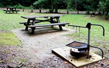 Bellbird campground - Foster Accommodation