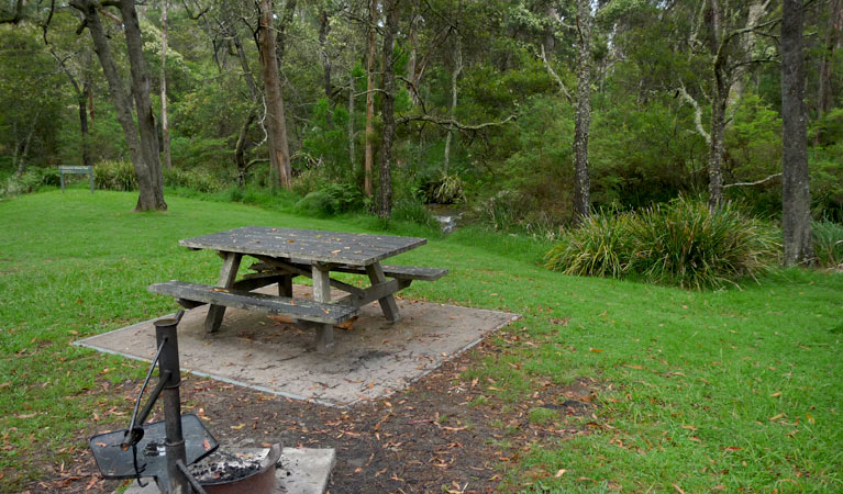 Chaelundi campground - Foster Accommodation