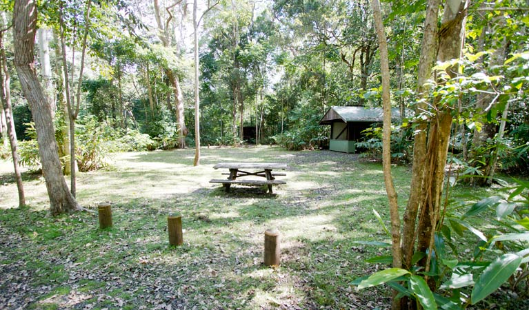 Iron Pot Creek campground - Foster Accommodation