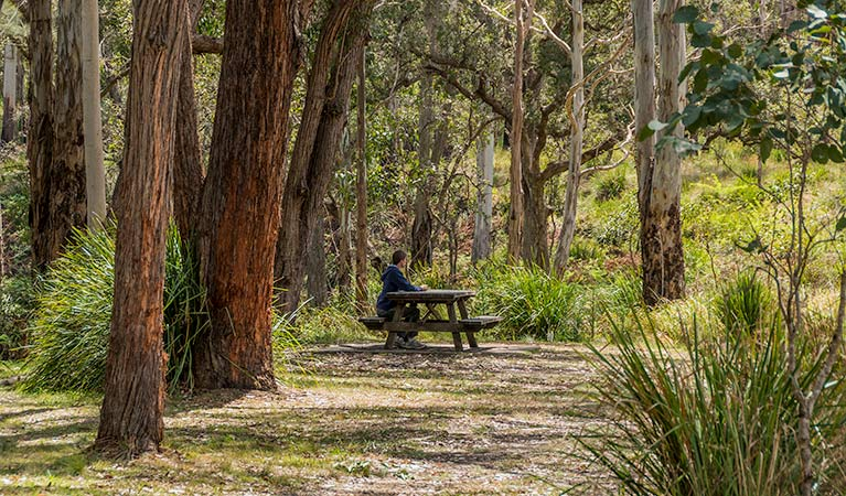 Koreelah Creek campground - Foster Accommodation