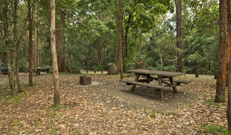 Sheepstation Creek campground - Foster Accommodation