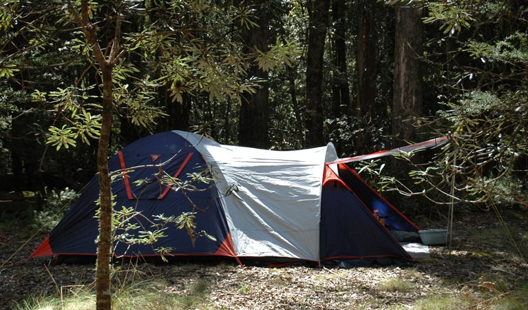 Thungutti campground - Foster Accommodation