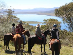 Reynella Homestead and Horseback Rides - Foster Accommodation