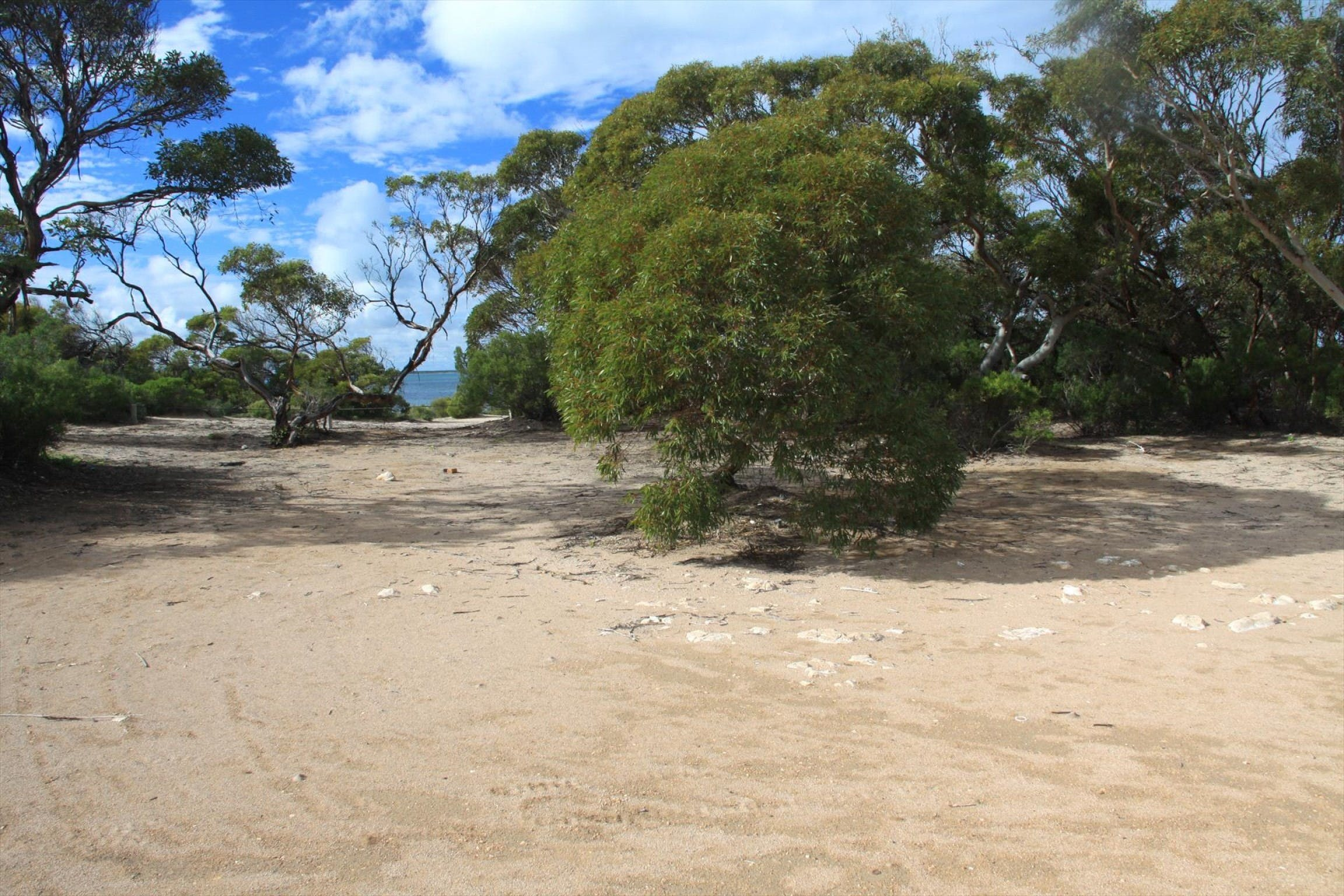 Acraman Creek Conservation Park Campgrounds - Foster Accommodation