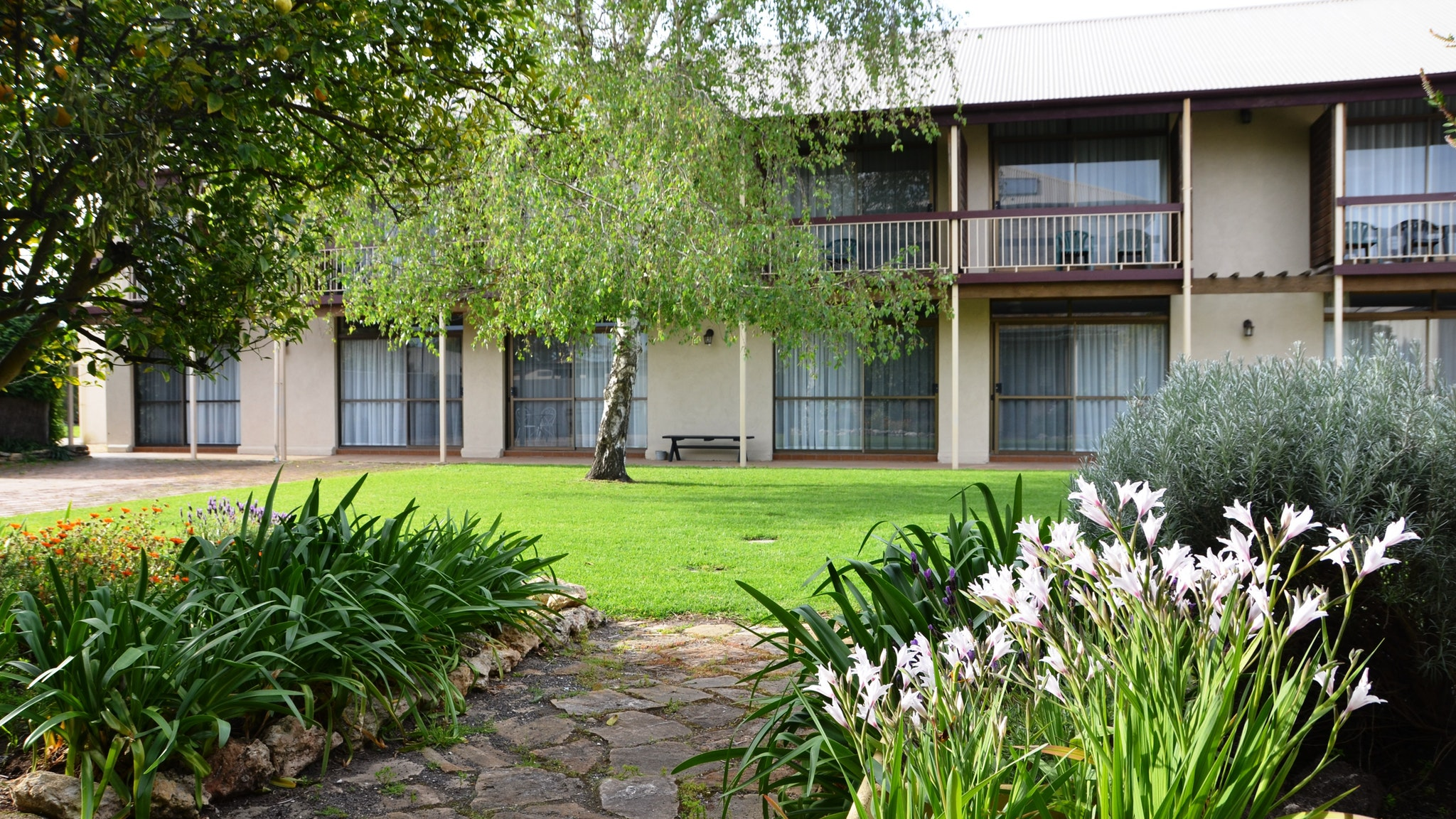 Coonawarra Motor Lodge - Foster Accommodation