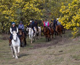 Burnelee Excursions on Horseback - Foster Accommodation