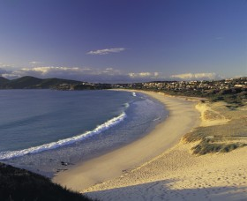 Forster Town Beach - Foster Accommodation