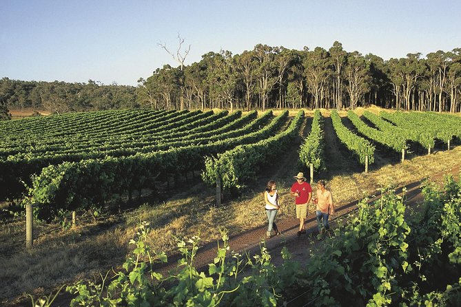 Margaret River Caves Wine and Cape Leeuwin Lighthouse Tour from Perth - Foster Accommodation