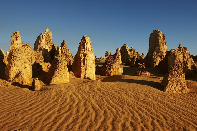 Pinnacles Day Trip from Perth Including Yanchep National Park - Foster Accommodation