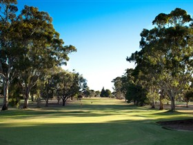 Loxton Golf Club - Foster Accommodation