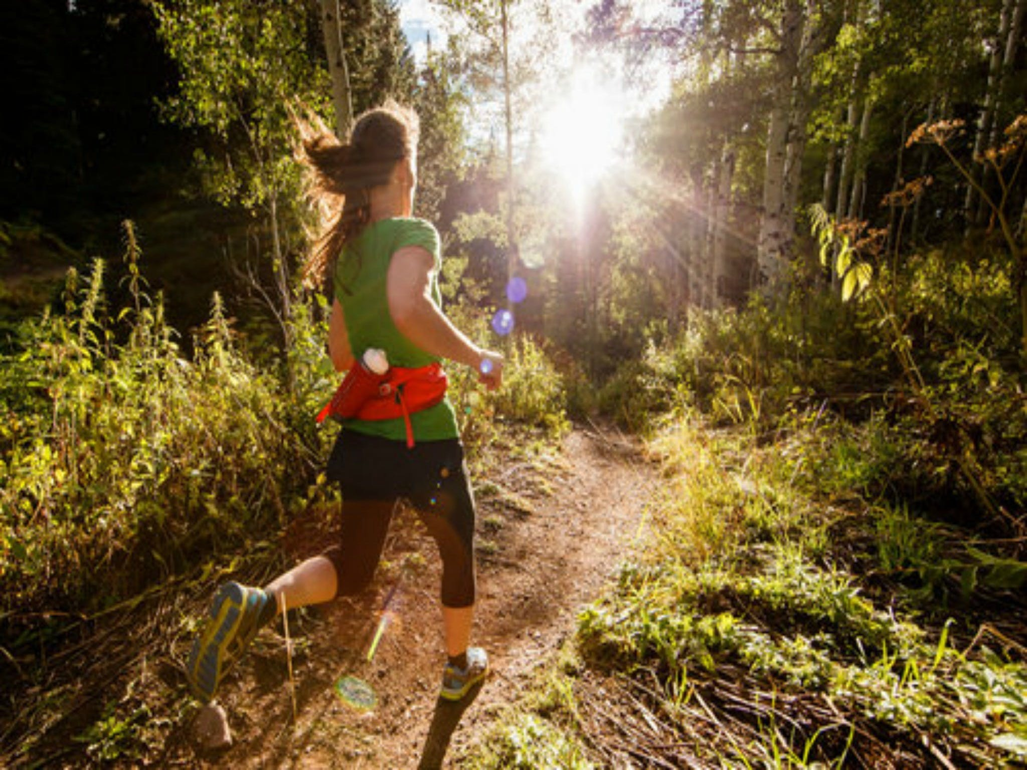 Run Dungog - Foster Accommodation