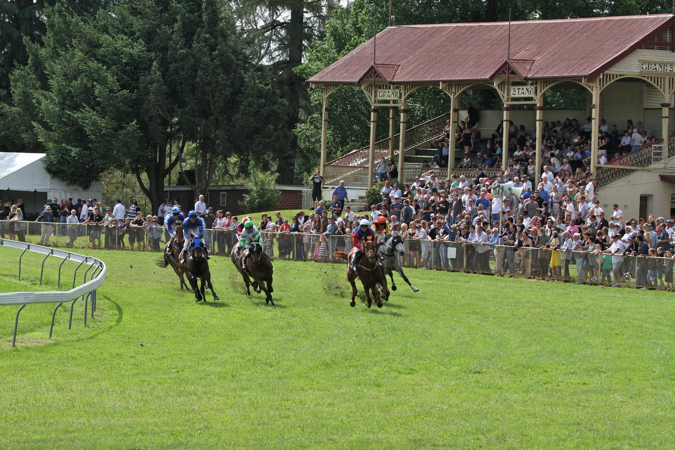 Tumut Derby Day - Foster Accommodation