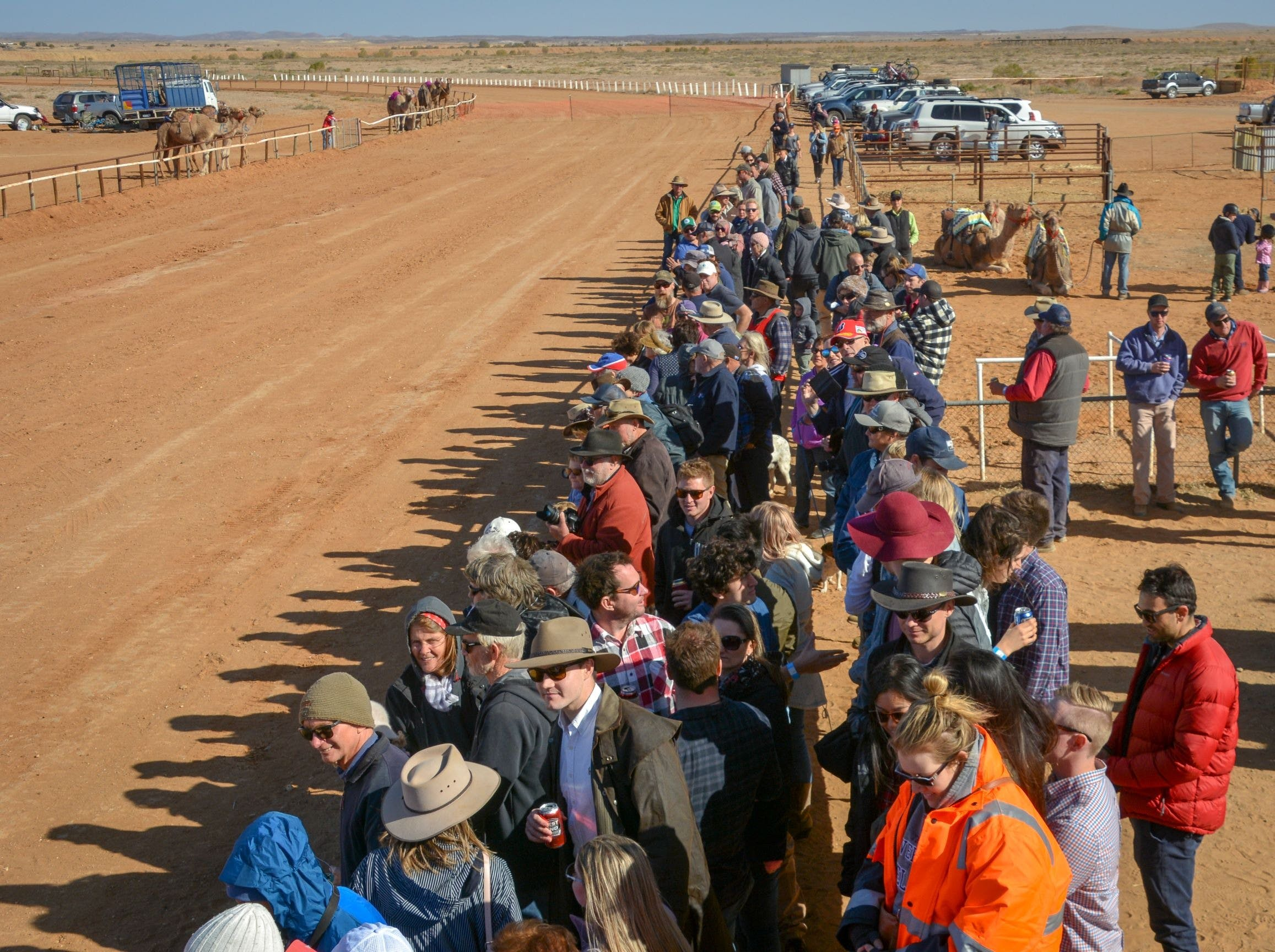28th Marree Australasian CAMEL CUP 3 July 2021 - Foster Accommodation