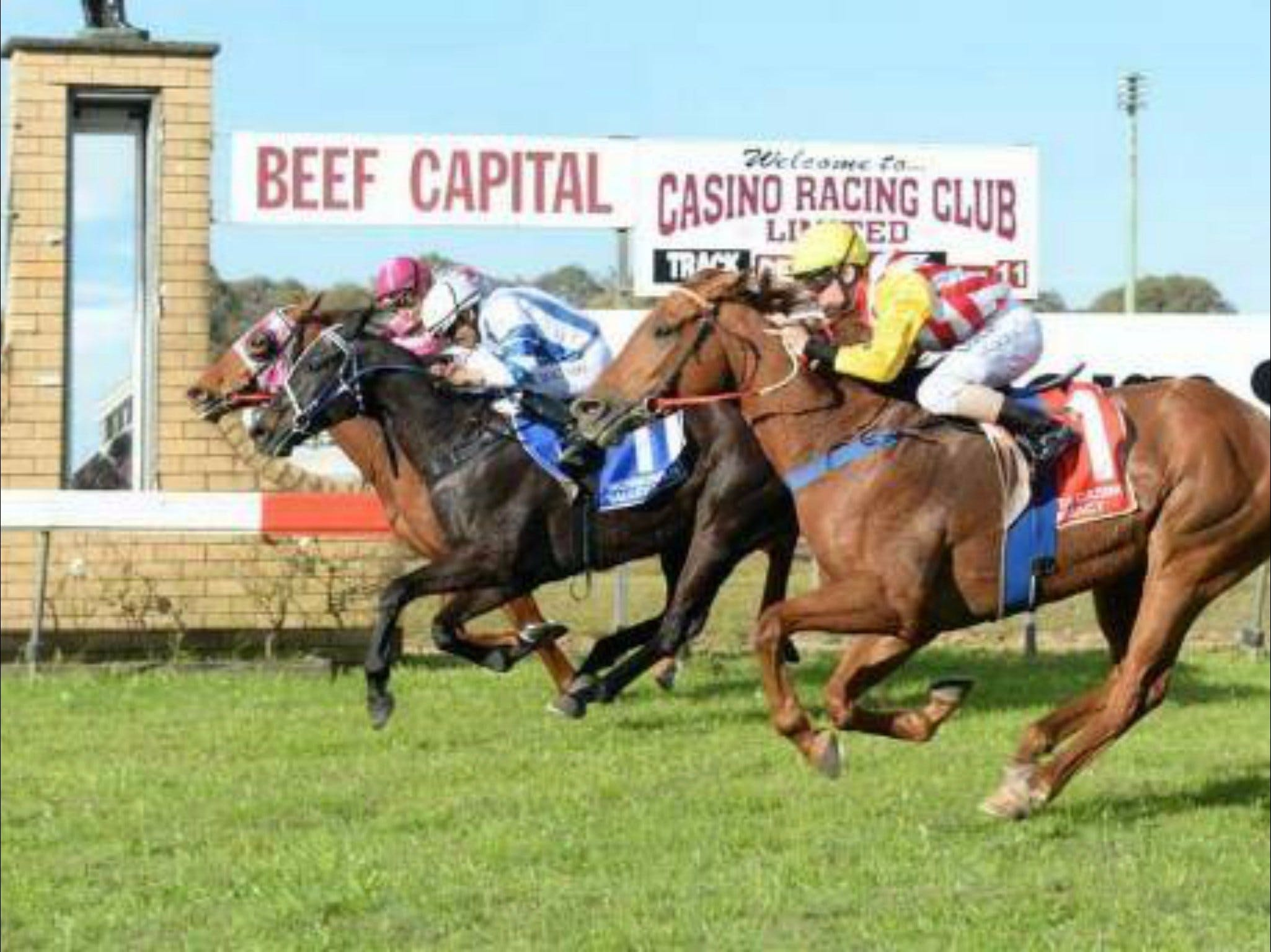 Casino Cup - Foster Accommodation