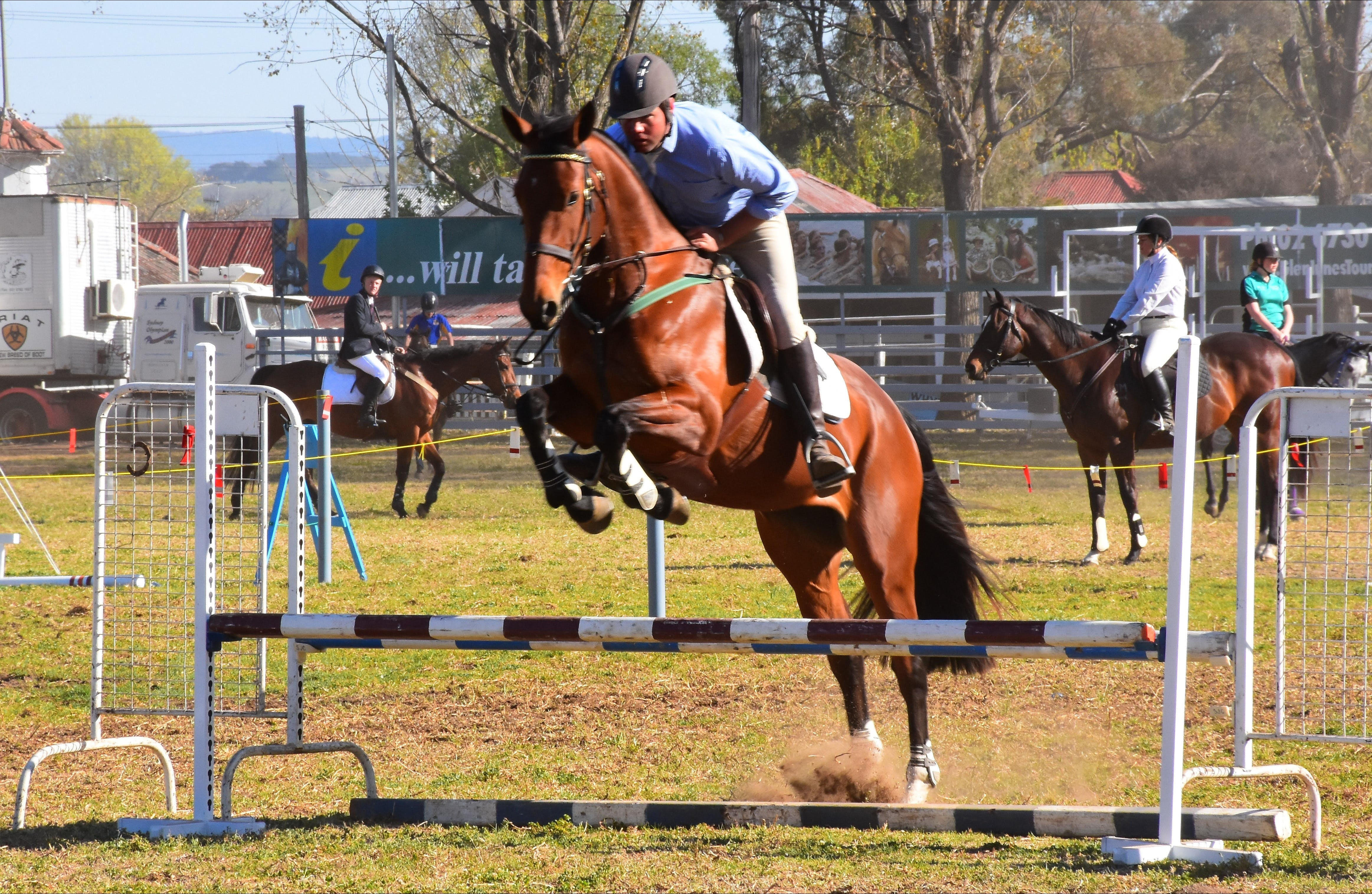 Glen Innes Pastoral and Agricultural Show - Foster Accommodation